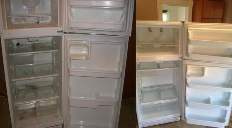 How to clean refrigerator mold with common cleaning products