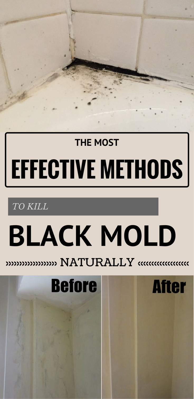the most effective methods to kill black mold naturally. Black Bedroom Furniture Sets. Home Design Ideas