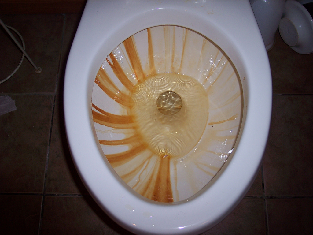 Toilet Rust Stains