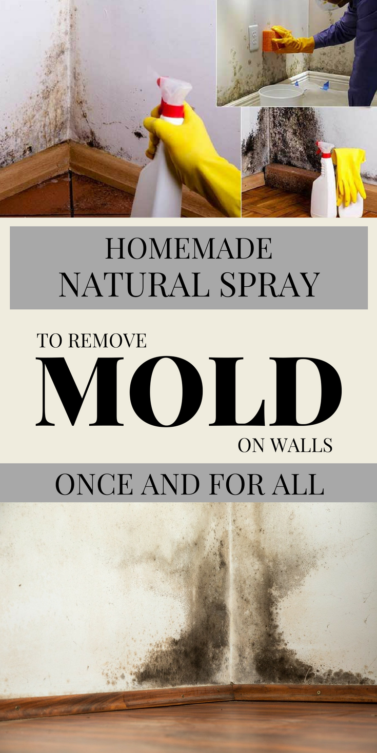 Homemade Natural Spray To Remove Mold On Walls Once And