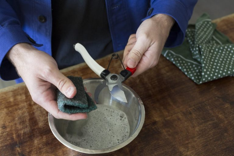 Grandpa's Natural Tricks To Remove Rust Easily, Especially From Gardening Tools