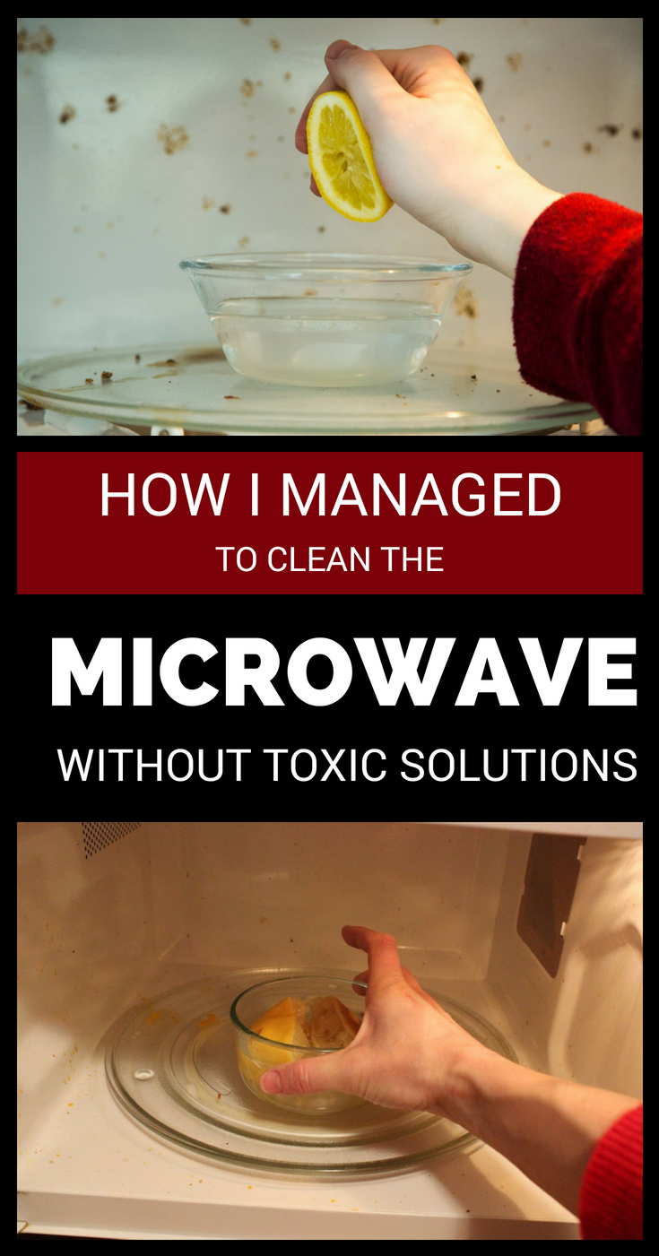 how to clean mold from microwave